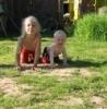 Детские сады №50 и 55 - какой выбрать? - последнее сообщение от Nada
